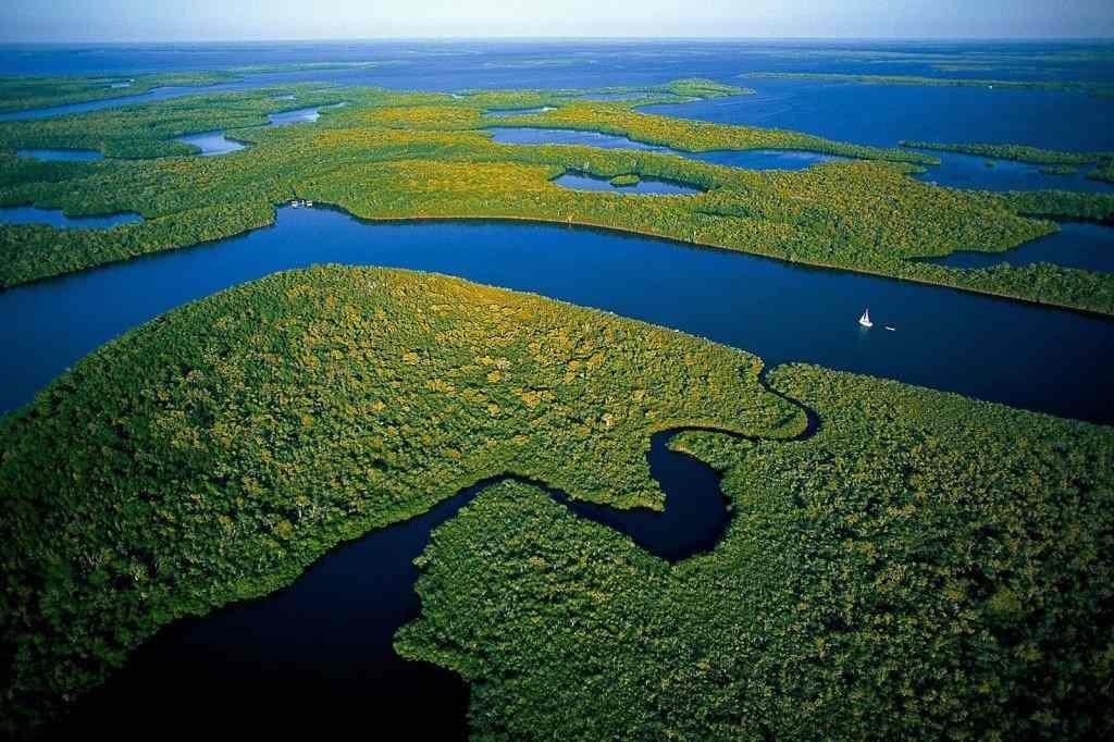 Consider A Trip to Everglades National Park