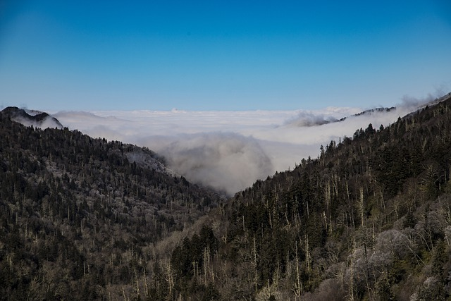 Visit this Great Smokey Mountains National Park