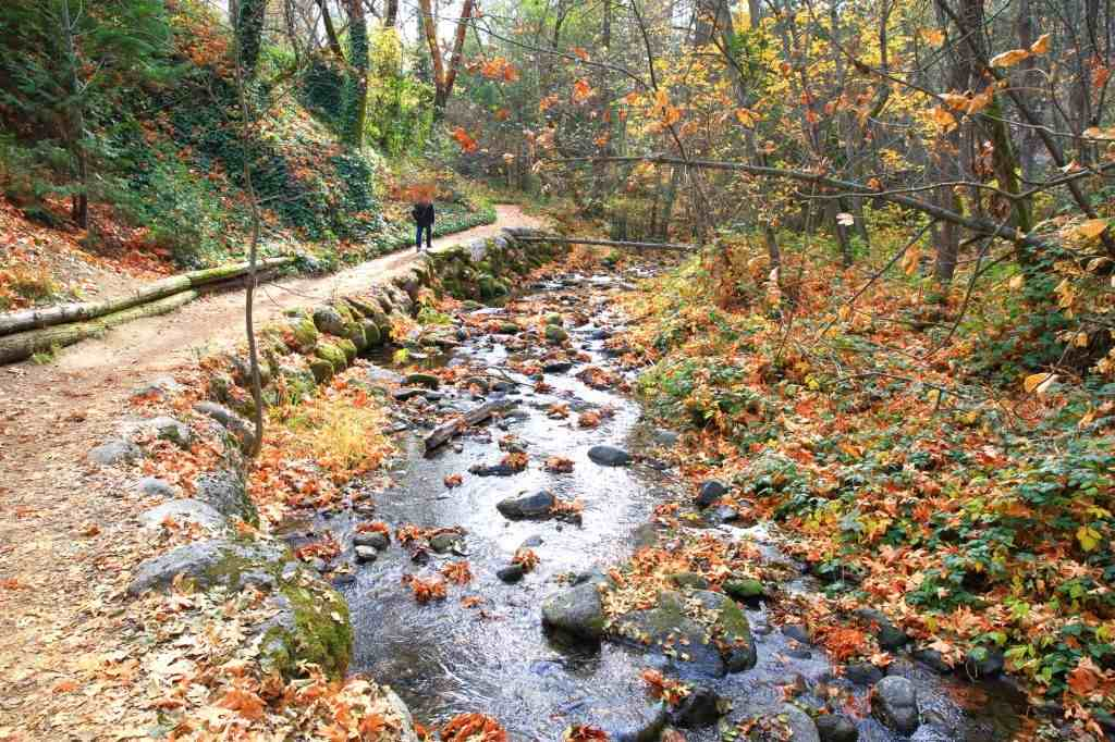 Visit Ashland, Oregon To Spend Adventourous Holidays